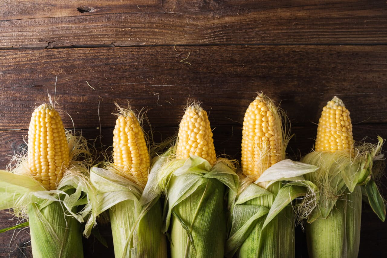 Corn and Grain Fed Beef – Is it Really That Bad?
