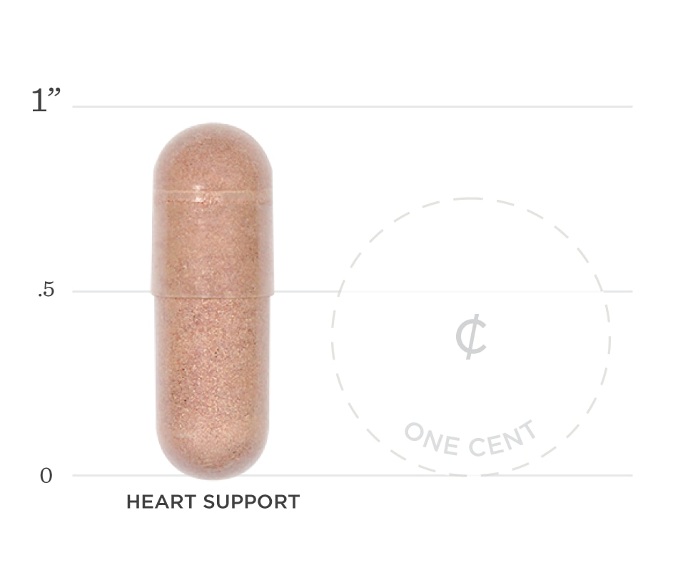 Heart Support Graph