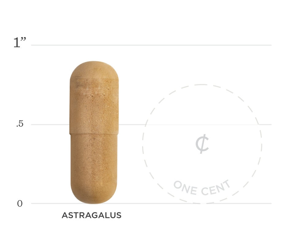 Astragalus Graph