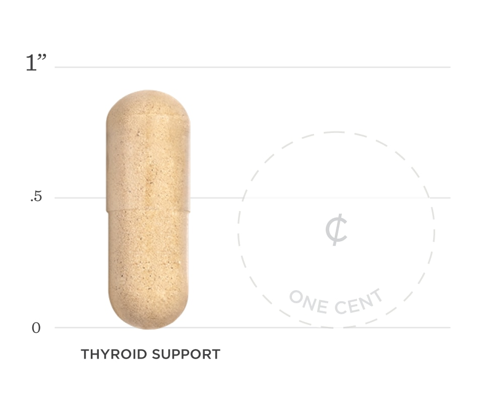 Thyroid Support Graph